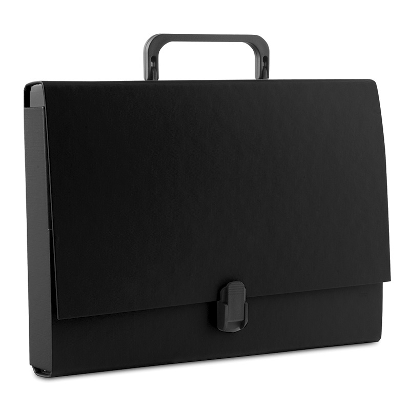 File Box PP A4/5cm with handle and clip lock black