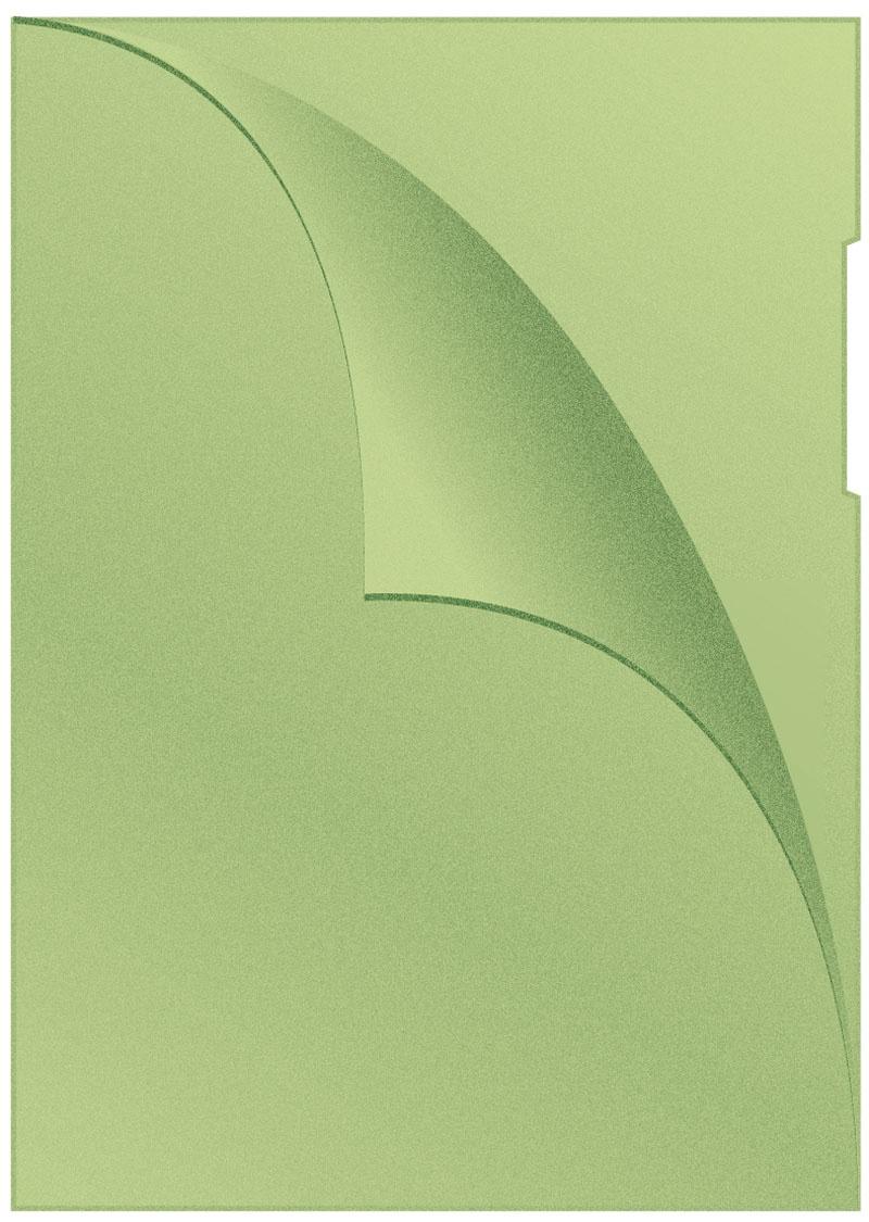 Obwoluta Q-CONNECT typu L, PP, A4, groszkowa, 120mikr., 100szt., zielona, Koszulki i obwoluty, Archiwizacja dokumentów