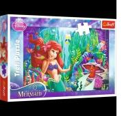 16250 100 - Zabawa w chowanego / Disney Princess, Puzzle, Zabawki