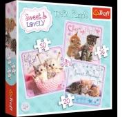 34809 3w1 - Sweet & Lovely - Słodkie kotki / Getty Images_L, Puzzle, Zabawki