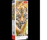 75002 300 Home Gallery - Skradający się tygrys / 500px_L, Puzzle, Zabawki