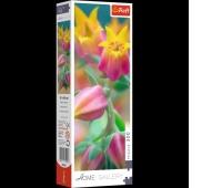 75005 300 Home Gallery - Kwiaty w rozkwicie / 500px_L, Puzzle, Zabawki