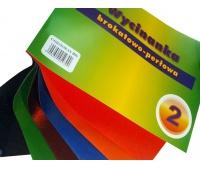 Wycinanka A4 brokatowo-metalizowana 2, Produkty kreatywne, Artykuły dekoracyjne