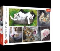 26145 1500 - Kocie sprawy - kolaż / 500px_L, Puzzle, Zabawki