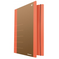 Cardboard folder with elastic band DONAU Life, 500gsm, A4, orange