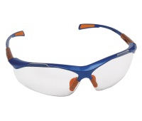 Safety Spectacles Nellore, glass 1F, clear