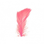 Piórka w torebce foliowej 15 gram, różowe, Produkty kreatywne, Artykuły dekoracyjne