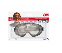 Safety Goggles 3M (2890), clear