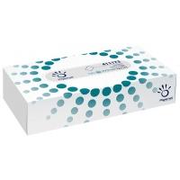 Chusteczki kosmetyczne celulozowe PAPERNET, 2-warstwowe, 100 listków, biały, Ręczniki papierowe i dozowniki, Artykuły higieniczne i dozowniki
