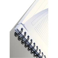 Kołonotatnik Project Book Executive A4 PP, w kratkę, Kołonotatniki, Zeszyty i bloki