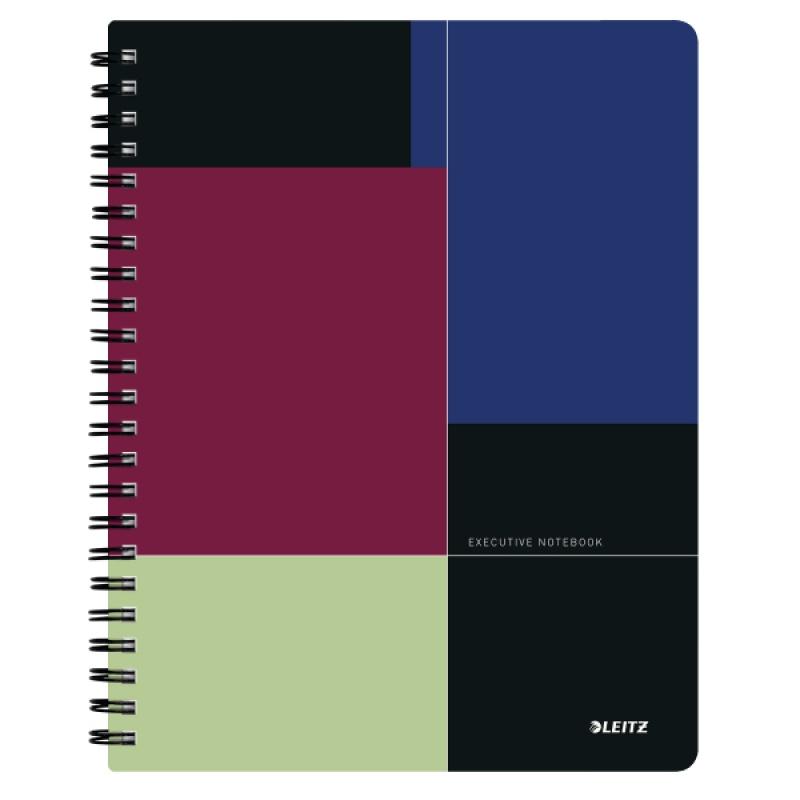 Kołonotatnik Project Book Executive A4 PP, w linie, Kołonotatniki, Zeszyty i bloki