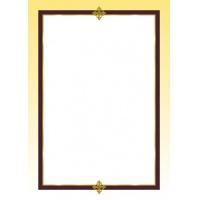 Arkusze barwny Francja 100g 50 arkuszy A4, Arkusze barwne, Galeria Papieru