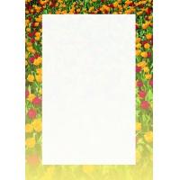 Arkusze barwne Tulipany 100g 50 arkuszy A4, Arkusze barwne, Galeria Papieru