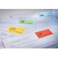 Etykiety trwałe kolorowe Avery Zweckform; A4, 100 ark./op., 210 x 297 mm, żółte, Etykiety do organizowania i archiwizowania, Etykiety