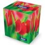 Chusteczki kosmetyczne celulozowe VELVET Cube, 2-warstwowe, 70 listków, biały