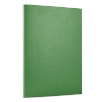 File, velcro fastening, OFFICE PRODUCTS, PP, A4/1.5cm, 3 flaps, green